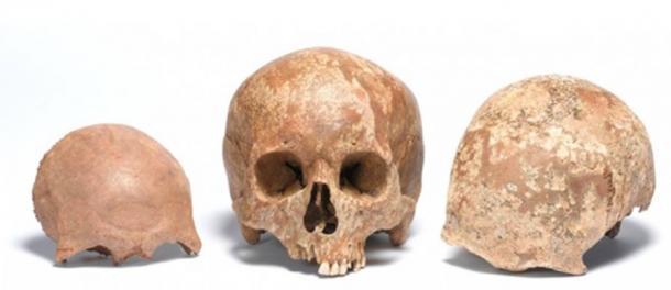 Cráneos hallados en la calle Liverpool de Londres. Pertenecen a individuos adultos que vivieron en la época romana. (Foto: Crossrail)