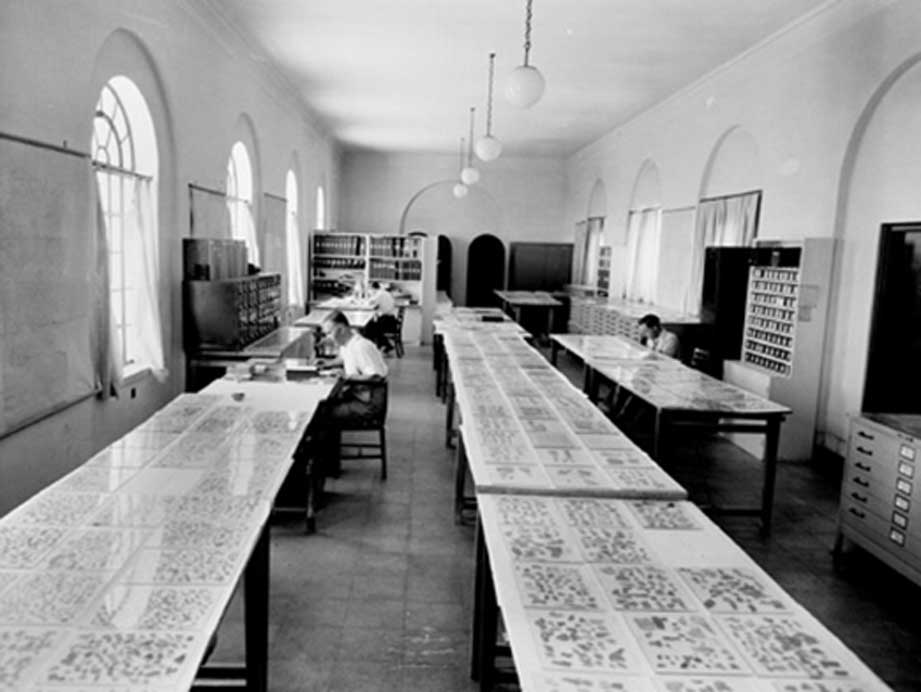 Expertos examinan fragmentos de los Manuscritos del Mar Muerto. (Dominio público)