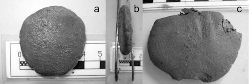 Vista frontal, de perfil y posterior de una de las antiguas tabletas medicinales romanas halladas entre los restos de naufragio del Relitto del Pozzino. (Imagen: PNAS/Giachi et. al.)