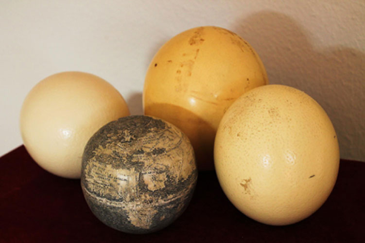 El antiguo globo terráqueo grabado sobre cáscara de huevo de avestruz, rodeado a su vez de varios huevos de avestruz. Fotografía: Washington Map Society.