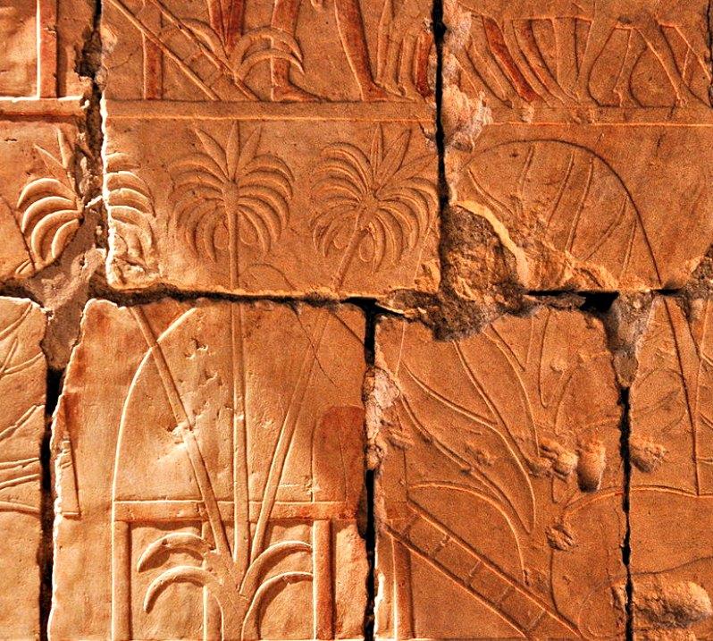 En este relieve aparecen representados árboles de incienso y mirra traídos por Hatshepsut de su expedición a Punt. (Hans Bernhard (Schnobby)/CC BY-SA 3.0)