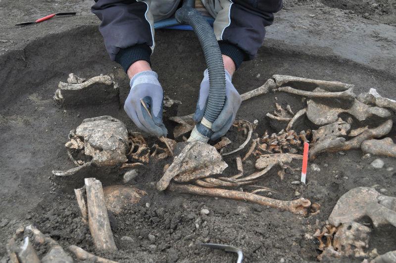 Arqueólogos excavan en Austria un campo de batalla de las Guerras Napoleónicas antes de que se reanuden las obras de una autopista. (Imagen: Novetus)