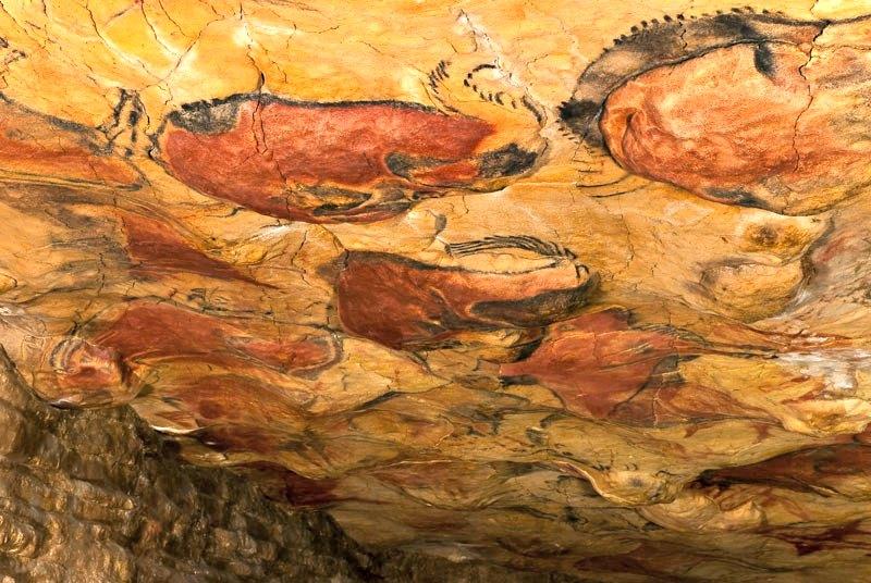Vista general del techo de polícromos de las Cuevas de Altamira en Cantabria, España. (Museo de Altamira y D. Rodríguez/CC BY-SA 3.0)