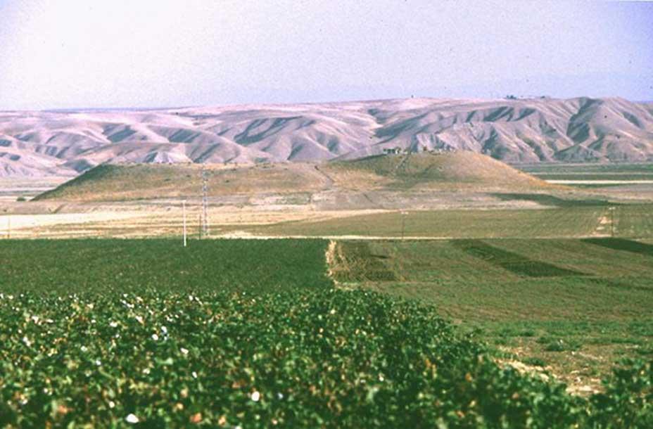 Ziyaret Tepe consta de una elevación central y un asentamiento situado a menor altura. (Imagen: Universidad de Maguncia)