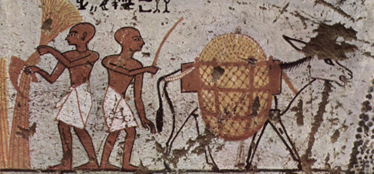 Asno en una pintura egipcia: 1298 a. C. – 1235 a. C. (Public Domain)