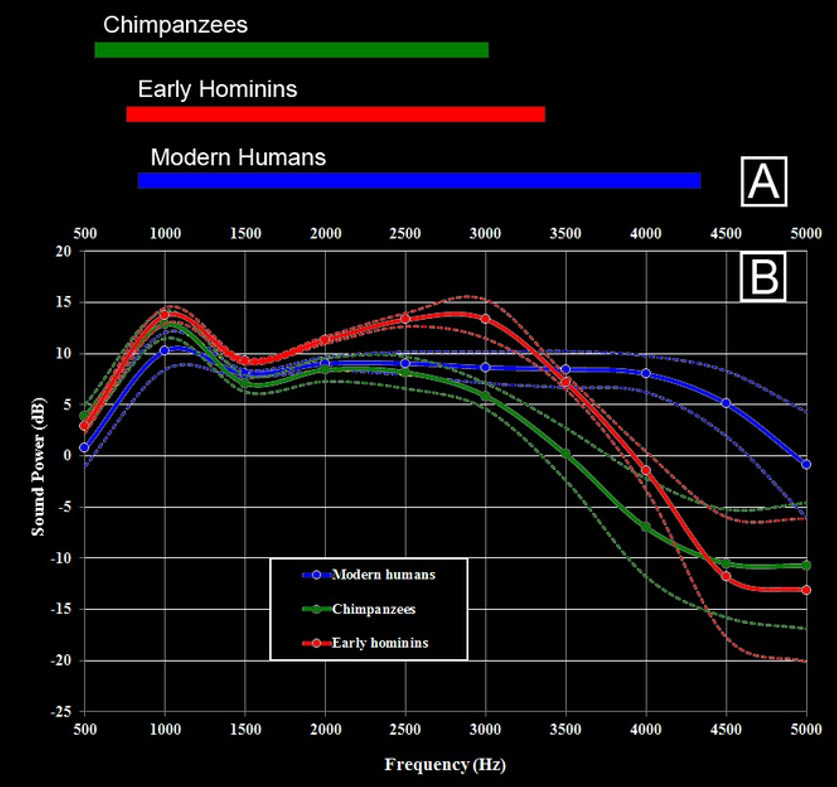 Sensibilidades auditivas para frecuencias entre 0,5 y 5,0 kHz de chimpancés, humanos y antiguos homínidos. Rolf Quam, CC BY-ND