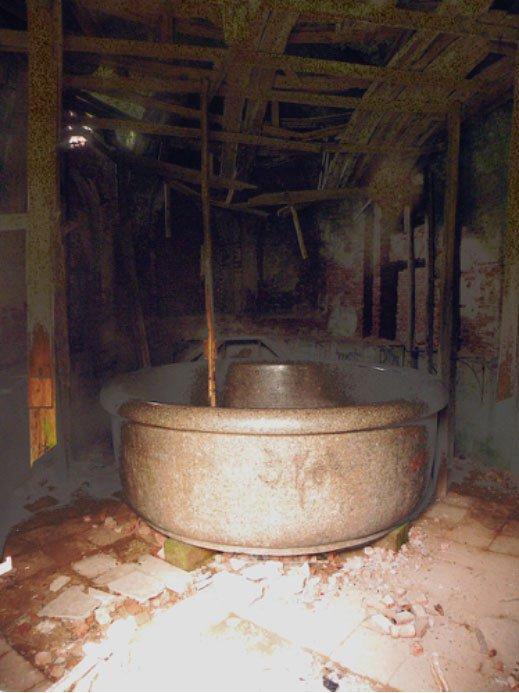 La famosa bañera del zar entre las abandonadas ruinas del Palacio de Babolovo (CC by SA 3.0)