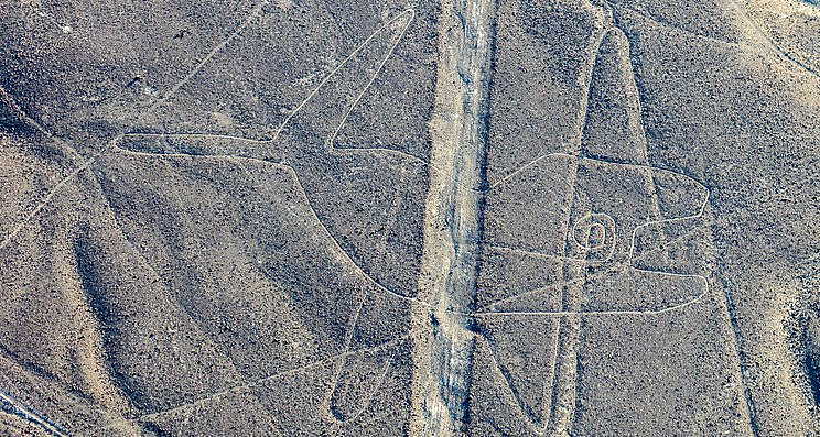 La Ballena, Líneas de Nazca. (Diego Delso, delso.photo/CC BY-SA 4.0)