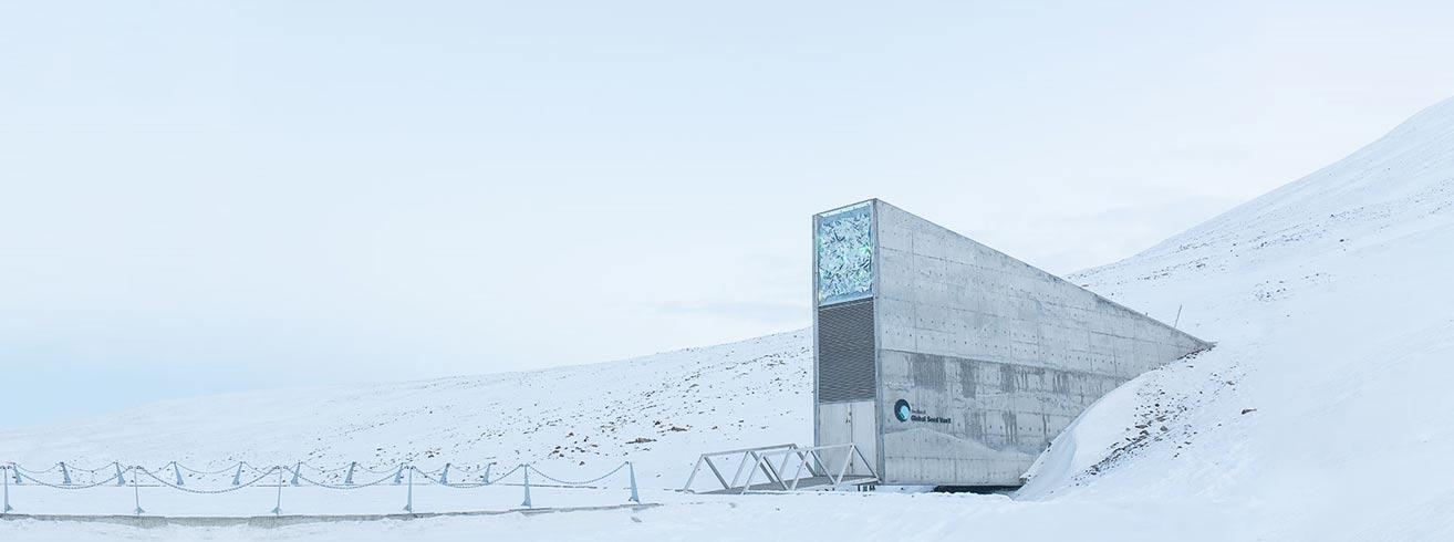 El Banco de Semillas Global de Svalbard, en Noruega, alberga semillas de cientos de miles de variedades y especies de frutas, verduras y cereales (foto: CropTrust.org)