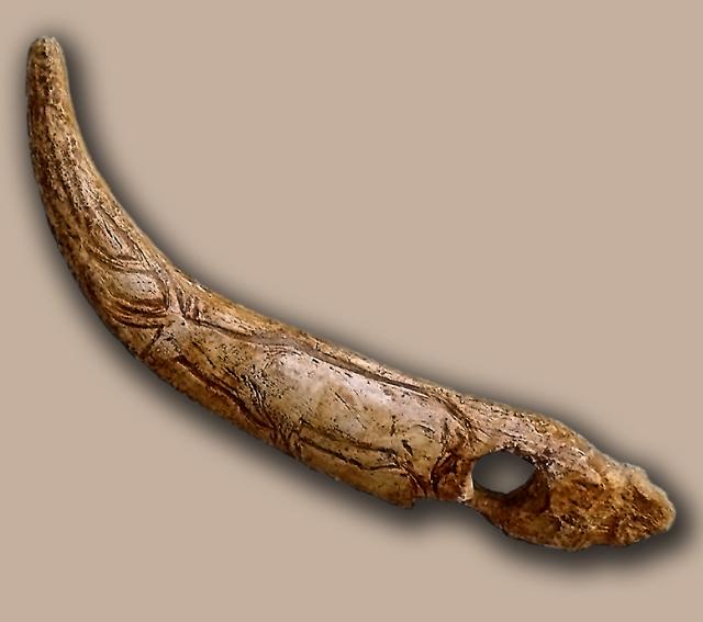 Bastón de mando perforado del nivel Magdaleniense Superior hallado en la Cueva de El Castillo (Cantabria, España). Ha sido adornado con el grabado de un ciervo (José Manuel Benito Álvarez - CC BY-SA 2.5)