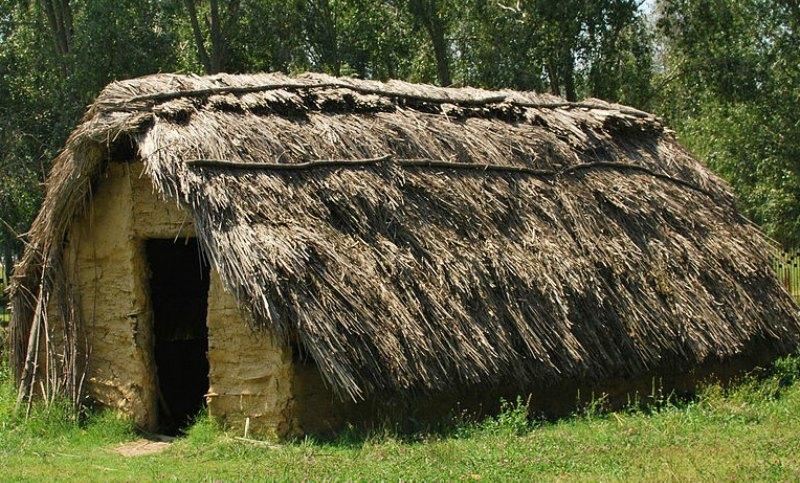 Reconstrucción de una cabaña neolítica según los datos aportados por los estudios del yacimiento de La Draga. (Patian/CC BY-SA 4.0)