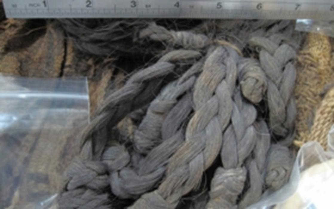 Cabellos de una de las momias más antiguas analizadas en el reciente estudio, hallada en el yacimiento del este de Coyo, cerca de San Pedro de Atacama (Chile) (IIAM-Universidad Católica del Norte (UCN))