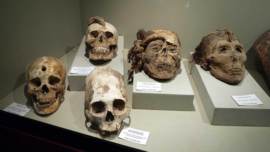 Cabezas trofeo con cuerdas y agujeros junto con un cráneo deformado/manipulado, todos ellos desenterrados cerca de Nazca. (CC BY-SA 2.0)