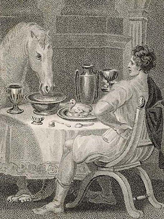 Calígula come con su caballo. (Yo amo la Historia)