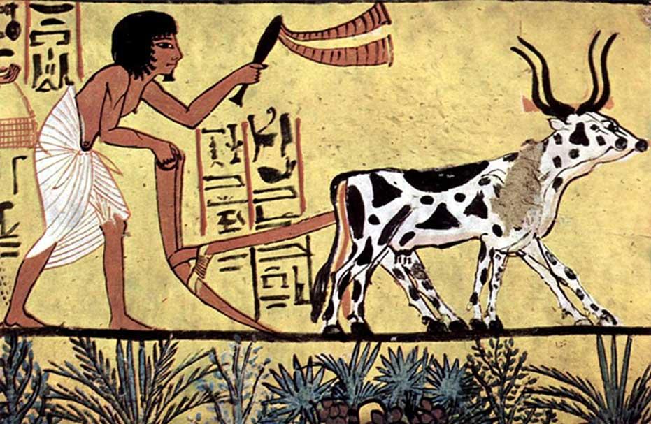 Campesino del antiguo Egipto arando. (Dominio público) Los antiguos egipcios tenían días festivos 'no laborables' en los cumpleaños de cinco de sus dioses: Osiris, Horus, Seth, Isis y Neftis.