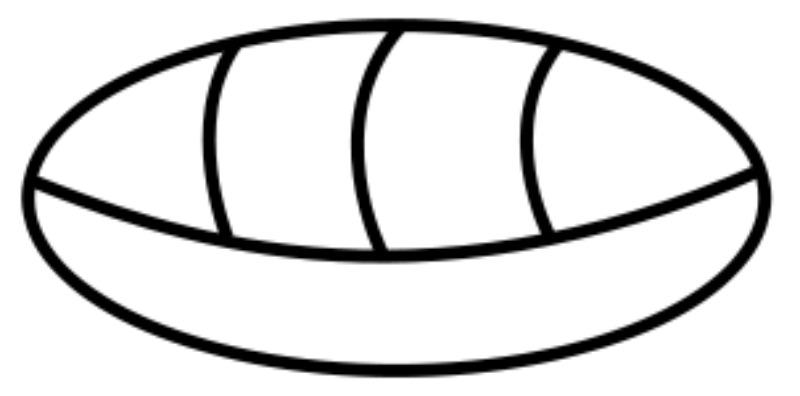 Símbolo maya para el cero que representa esquemáticamente un caracol, año 36 a. C. La utilización del cero por parte de la civilización maya constituye el primer uso documentado del cero en América. (Public Domain)