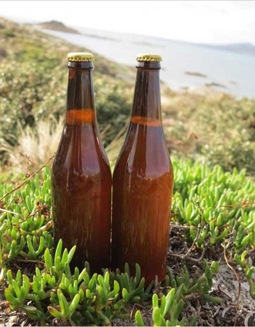 Botellas de la cerveza recreada recientemente según una antigua receta de finales del siglo XVIII. (David Thurrowgood)