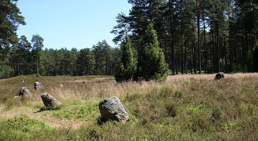 Vista parcial del Círculo IV del cementerio de Odrach, Gmina Czersk. (CC BY SA 3.0)