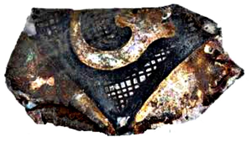Fragmento de una copa o vaso recuperada en la sala del Gran Maestre del castillo. (Fotografía: La Gran Época/Adrian Boas)