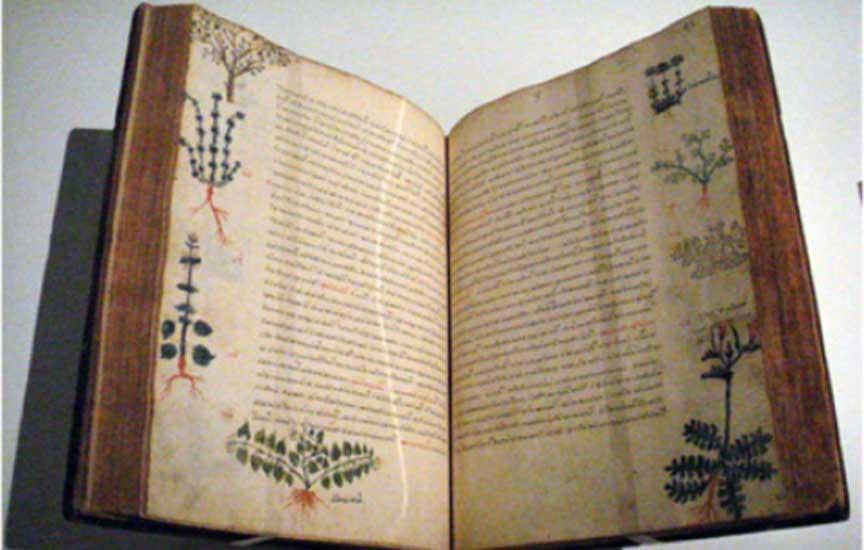 Copia bizantina del siglo XV del libro 'De Materia Medica', obra del médico de la antigua Grecia Dioscórides en la que se mencionan las propiedades beneficiosas de la Rhodiola rosea. (PHGCOM photo/Wikimedia Commons)