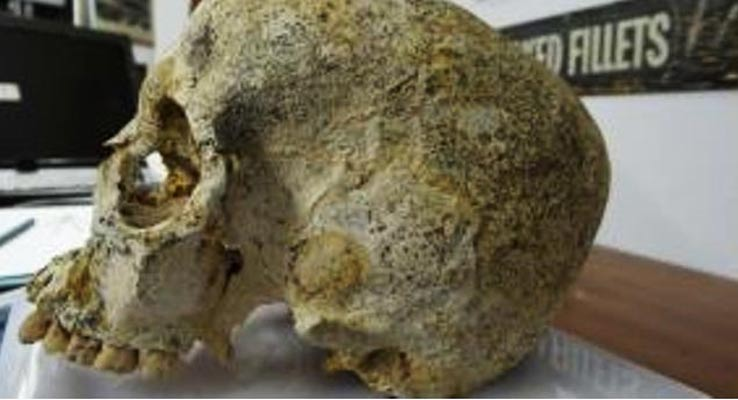 El cráneo de la joven mujer de la Edad del Bronce hallado en el yacimiento arqueológico de Achavanich, perteneciente a la antigua cultura del vaso campaniforme. (M. Hoole)