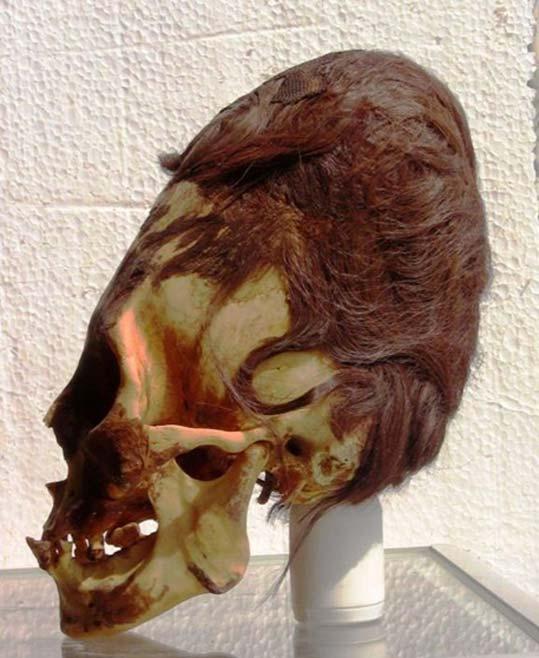 Cráneo elongado de Paracas con sus característicos cabellos rojizos. (Brian Foerster)