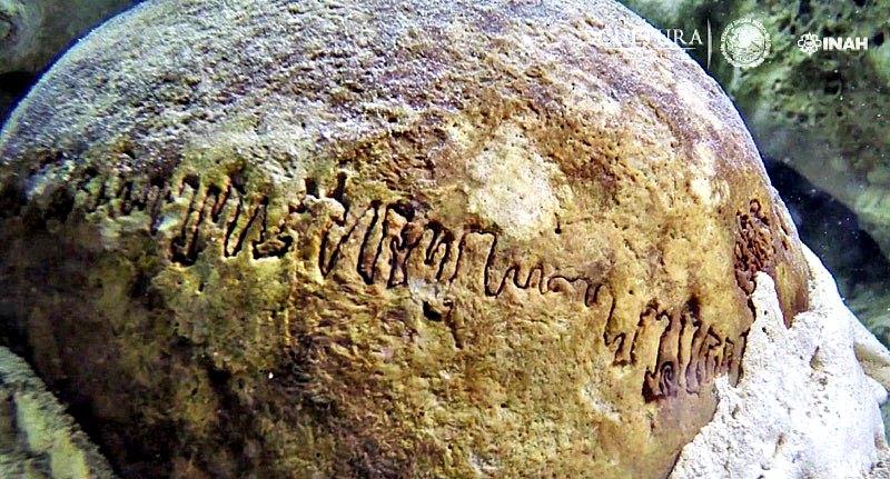 Fotografía de las suturas del cráneo recientemente descubierto. (Fotografía: INAH/Proyecto GAM)
