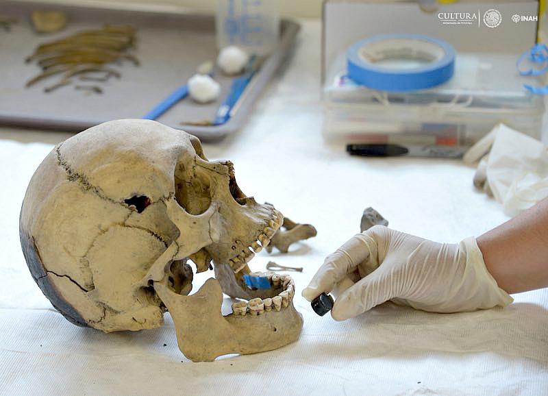 Cráneo recuperado de hombre adulto, junto al que se encontró un bezote que debió portar en el labio. (Fotografía: Héctor Montaño/INAH)