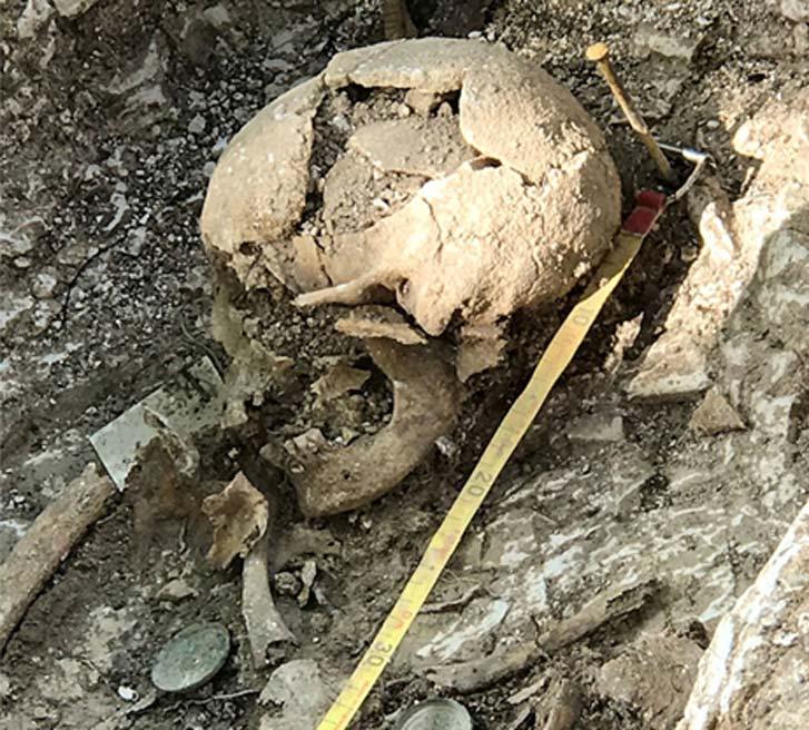 Cráneo descubierto en el yacimiento de Barrow Clump, llanura de Salisbury (Inglaterra). (Crown Copyright 2018)