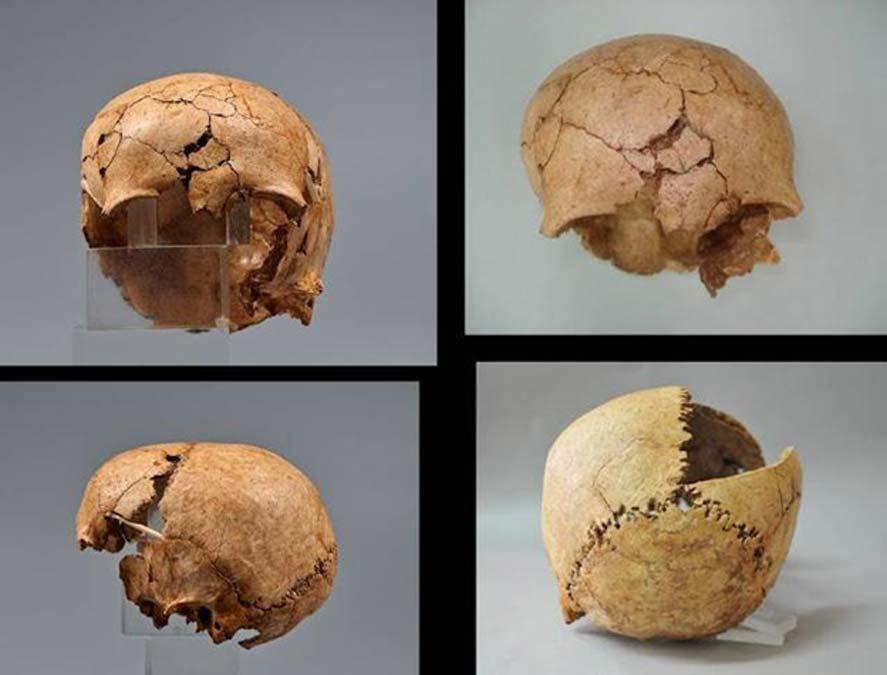 Se encontró el cráneo cortado de una joven entre cráneos de animales diversos. (Maria Andreadaki-Vlazaki via ANA-MPA)