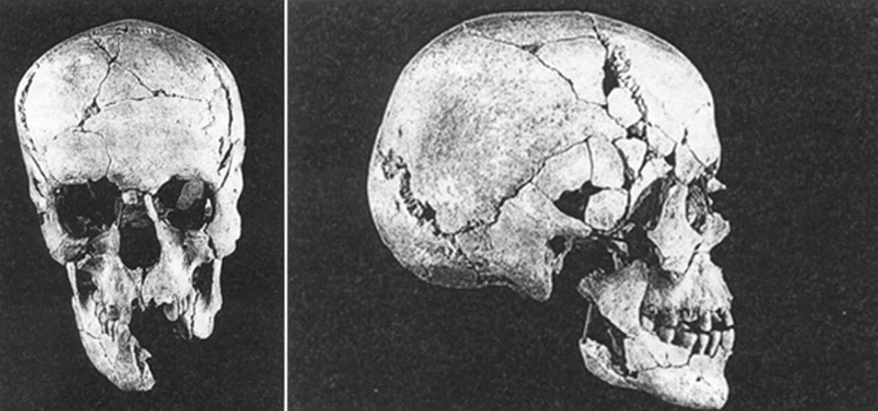 Cráneo encontrado en Qumrán. (Archaeology-of-Qumran/CC BY SA 3.0)