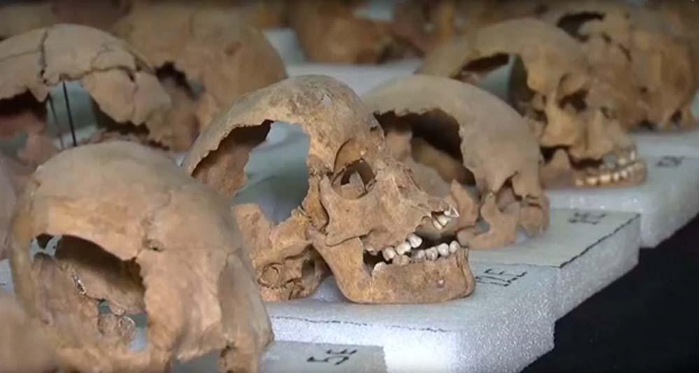 Algunos de los 676 cráneos hallados hasta ahora en el reciente descubrimiento realizado en Ciudad de México (Imagen: Youtube)