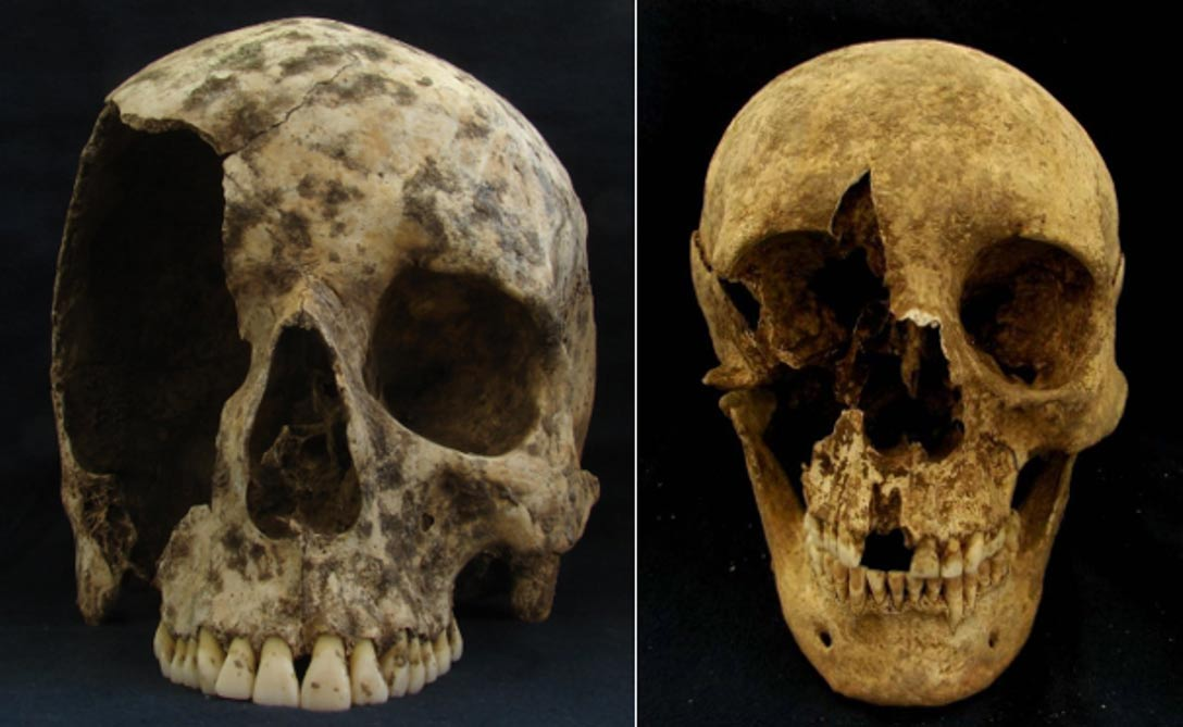 Cráneos de dos hombres inmigrantes hallados en Roma. (Kristina Killgrove)