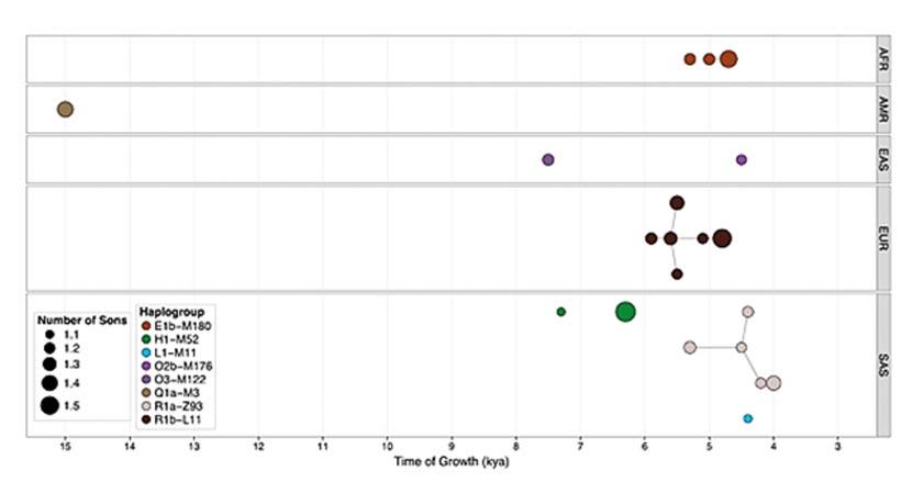 Crecimiento de los diferentes haplogrupos en diversas regiones del mundo. (Instituto Sanger de Cambridge)