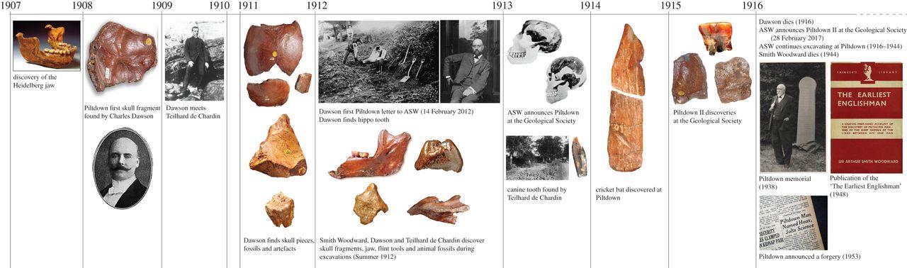 Cronología de los principales hechos y descubrimientos relacionados con el fraude del 'Hombre de Piltdown'. (De Groote, I. et al.)