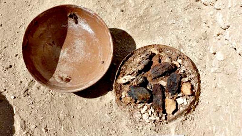 Encontrado boca abajo, este cuenco ha logrado preservar, casi intactos, cuatro dátiles y otros frutos pendientes de identificación. (Fotografía: ABC)