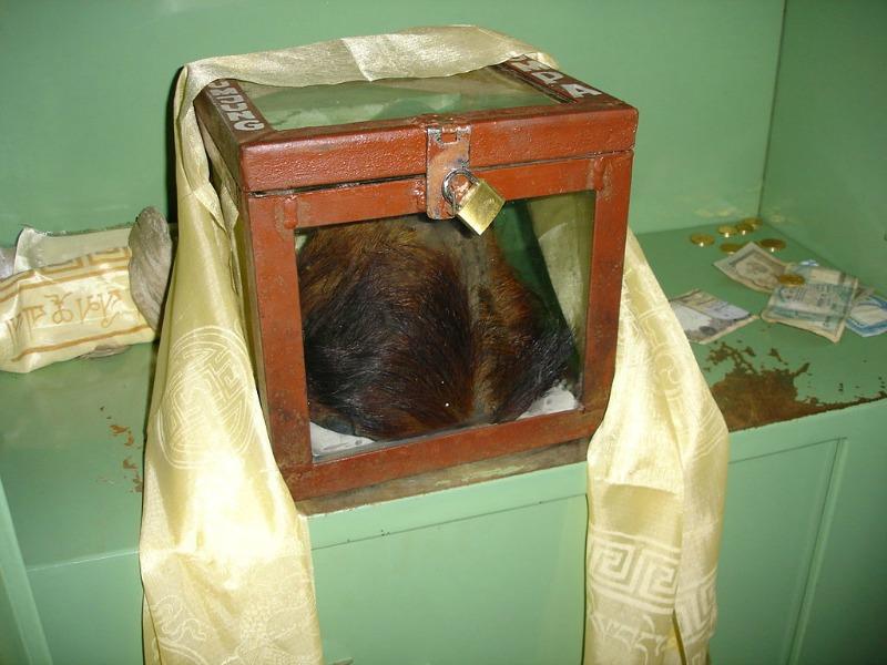 Supuesto cuero cabelludo de un yeti, expuesto en el monasterio Khumjung de Nepal. (Nmnogueira/CC BY-SA 2.5)