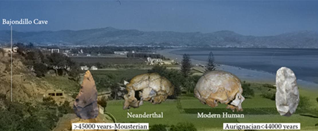Cueva del Bajondillo y bahía de Malága (España) a finales de los años cincuenta. Las imágenes en primer plano muestran los cráneos de un Neandertal (La Chapelle-aux-Saints, Francia, izquierda) y un humano moderno (Abri Cro-Magnon, Francia, derecha). La herramienta lítica de la izquierda corresponde a la tecnología neandertal musteriense, y la de la derecha a la auriñaciense, típica de los humanos modernos. Ambas herramientas fueron recuperadas en la cueva del Bajondillo. (Crédito: Profesor Chris Stringer y Musée de l'Homme)