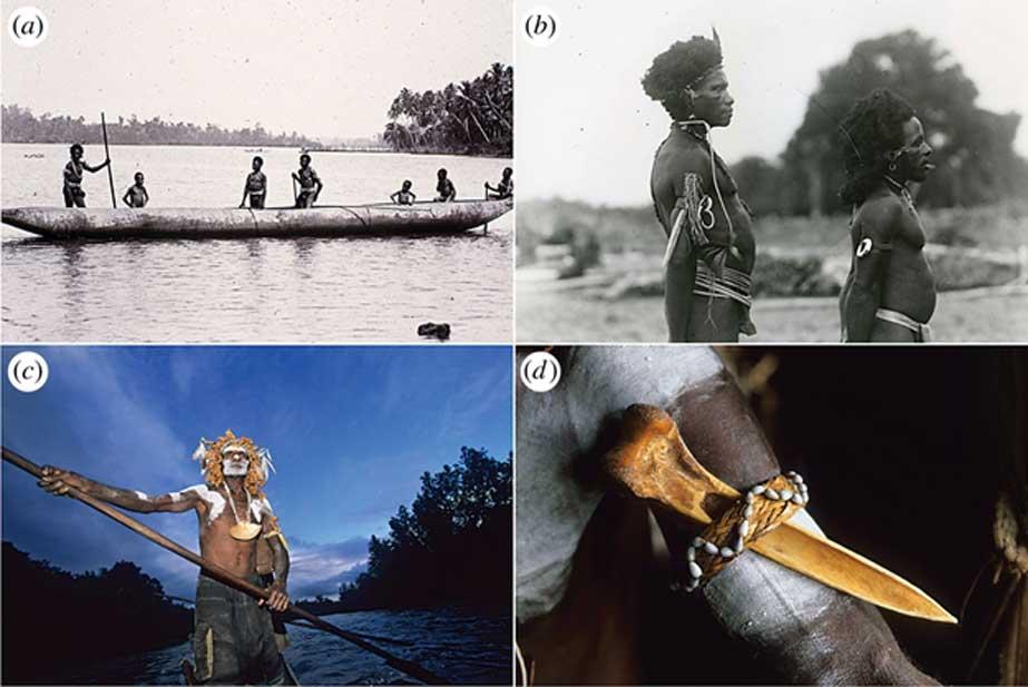 Los puñales de hueso de Nueva Guinea eran objetos cargados de prestigio social y utilizados a menudo como adorno personal. (Bruno Zanzottera)