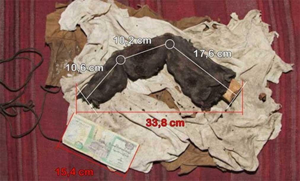 Fotografía del dedo momificado junto con sus medidas. Cortesía de Gregor Spörri