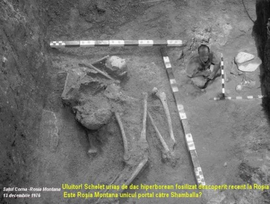 Descubrimiento del esqueleto que medía 10 metros (32,8 pies) de estatura. (Oculto Revalado A Verdade)