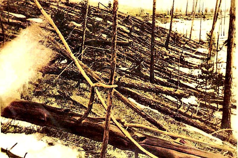 Estragos causados por la explosión de Tunguska. Los árboles fueron derribados y ardieron en cientos de kilómetros cuadrados por el impacto del meteorito de Tunguska. Esta imagen ha sido recortada de la fotografía original, tomada en mayo de 1929 en el transcurso de la expedición de Leónidas Kulik. (Dominio público)