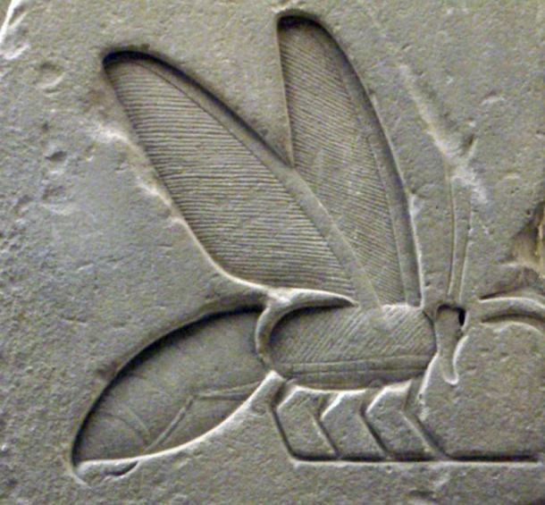 Detail-of-a-bee-hieroglyph.jpg