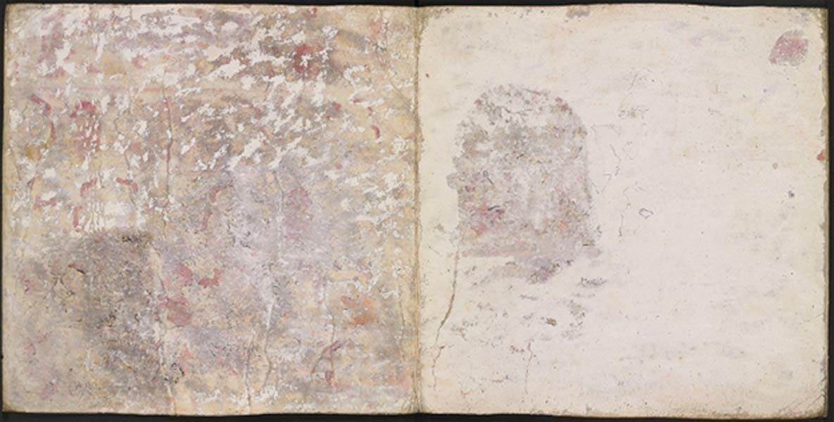 Esta imagen nos muestra el dorso de las páginas 11 y 10 del Códice Añute, con las zonas que quedaron físicamente al descubierto tras la investigación llevada a cabo en la década de 1950. (©The Bodleian Libraries, University of Oxford, MS. Arch. Selden. A. 2.)