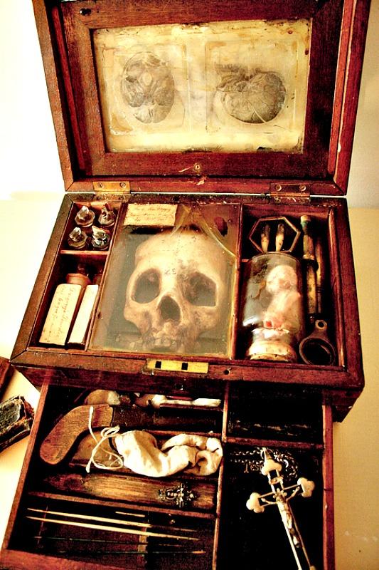 Supuestos restos de un vampiro junto con los artefactos empleados para darle caza. (Fotografía: Merrylin Cryptid Museum)