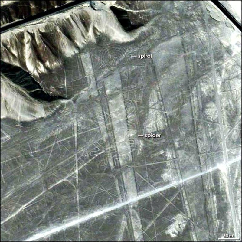 Espiral-araña-Nazca.jpg