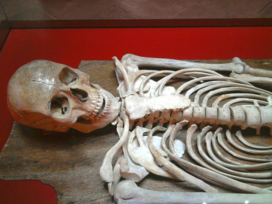 Restos óseos del Joven de Byrsa hallados en Cartago. (Public Domain)