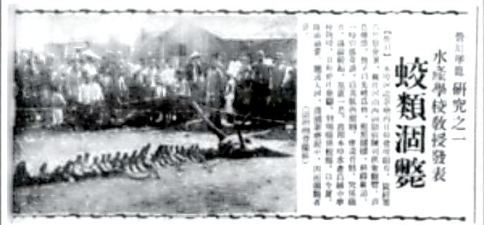 Fotografía y noticia del descubrimiento del esqueleto de un supuesto dragón tal y como apareció publicada en un periódico chino del año 1934. (Fotografía: La Gran Época)