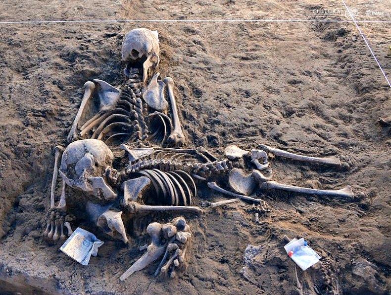 Hasta el momento, los restos descubiertos –colocados boca abajo en su mayoría– corresponden a 145 individuos, pero no se descarta localizar nuevas tumbas. (Fotografía: Melitón Tapia/INAH)