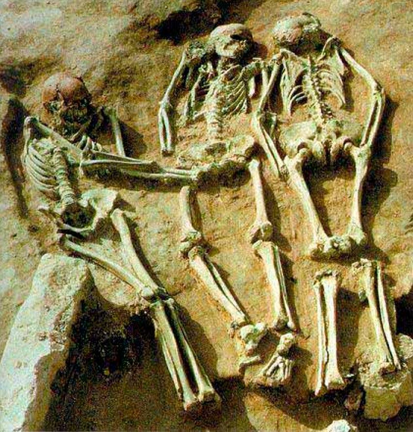 Vista de los esqueletos de los tres hombres jóvenes enterrados juntos en el triple entierro prehistórico de Dolní Věstonice. (connellodonovan)